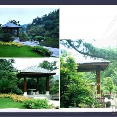 荣域花园装修